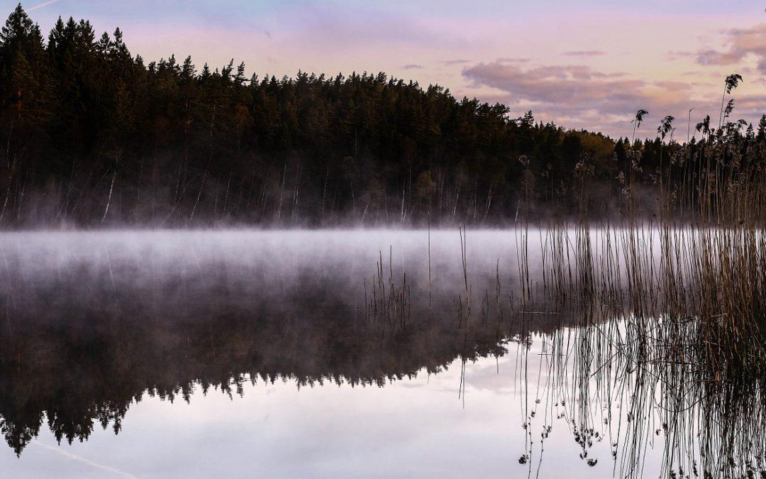 Schwedenkrimi Lågomby