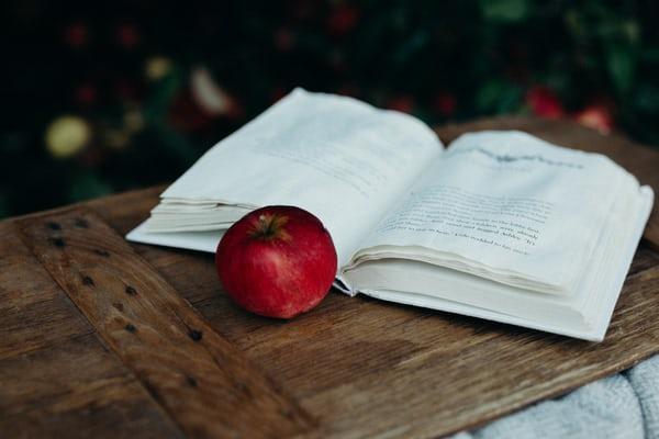 Das Märchen vom Wunderhaus Verlag